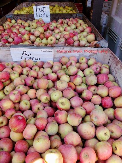 Lots of Apples